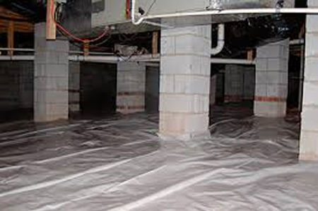 crawl space mold mildew